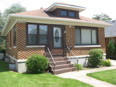 Joliet Single Family Home New: 528 North Briggs Street