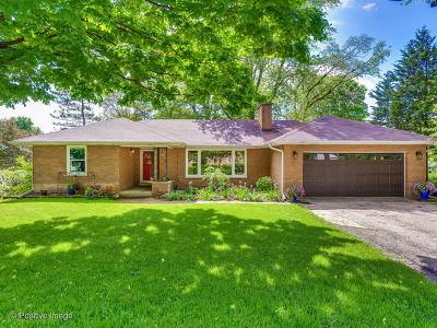 Palatine Single Family Home New: 322 South Plum Grove Road