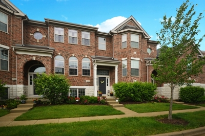 Winfield Condo/Townhouse New: 27w759 North Meadowview Drive