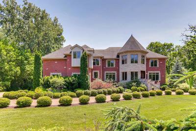 Palos Park IL Single Family Home New: $1,300,000