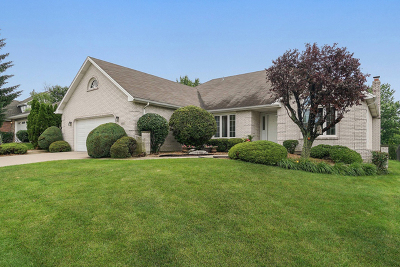 Orland Park IL Single Family Home New: $375,000