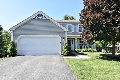 Aurora Single Family Home New: 541 Wingpointe Drive