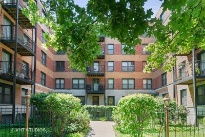 Chicago IL Condo/Townhouse New: $250,000