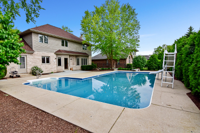 Orland Park IL Single Family Home New: $478,000