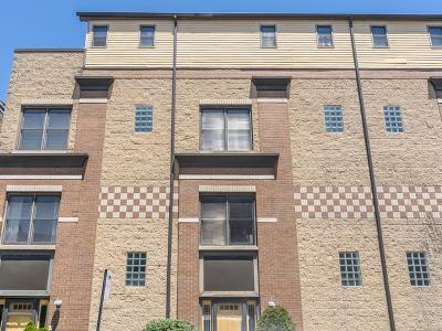 Chicago IL Condo/Townhouse New: $469,900