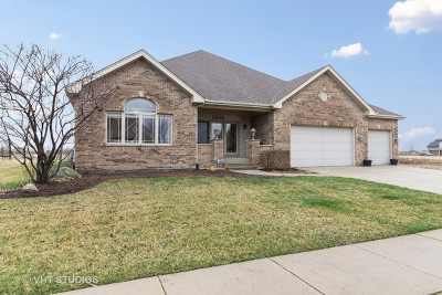 Frankfort IL Single Family Home New: $419,000