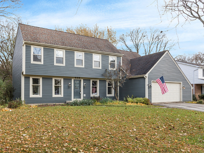 Naperville Single Family Home For Sale: 608 South Charles Avenue