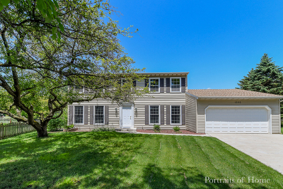 Naperville Single Family Home For Sale: 1205 Vermont Court