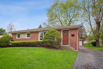 Downers Grove Single Family Home For Sale: 4926 Cumnor Road