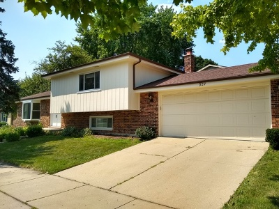 Naperville Rental For Rent: 327 West 6th Avenue