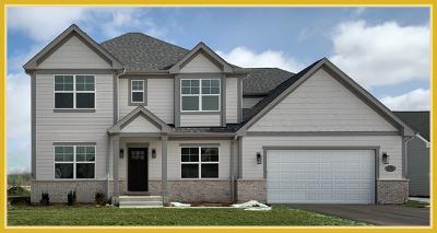 Elgin Single Family Home New: 777 Richwood Avenue