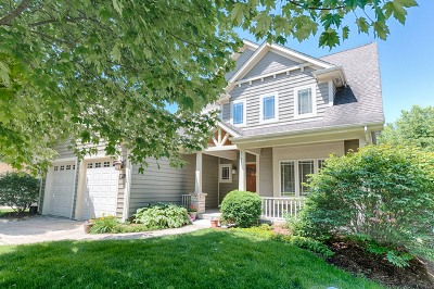 Downers Grove Single Family Home For Sale: 6324 Powell Street