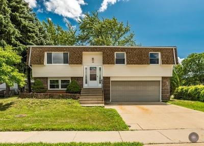 Glendale Heights Single Family Home For Sale: 53 E Stevenson Drive West