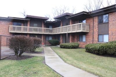 Glen Ellyn Condo/Townhouse For Sale: 481 Duane Terrace #C4