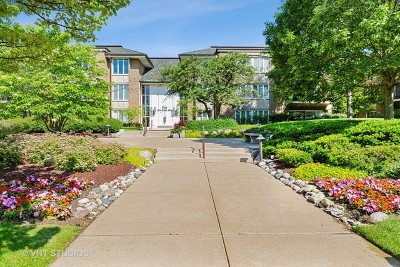 Oak Brook Condo/Townhouse For Sale: 1 Oak Brook Club Drive #A106