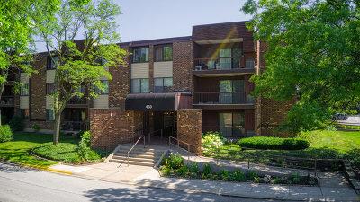 Glen Ellyn Condo/Townhouse For Sale: 460 Raintree Court #3N