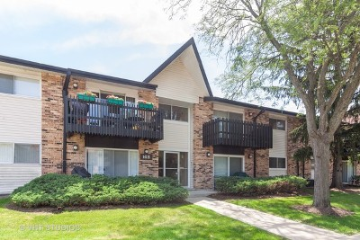 Willowbrook Condo/Townhouse For Sale: 14b Kingery Quarter #107