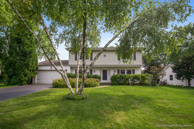 Wheaton Single Family Home For Sale: 25w665 Towpath Court