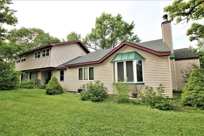Kane County Single Family Home For Sale: 35w252 Country School Road