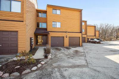 Hickory Hills Condo/Townhouse Contingent: 9553 Arrowhead Drive #E1