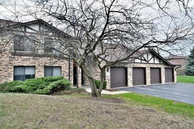 Lisle Condo/Townhouse For Sale: 6270 Trinity Drive #1C