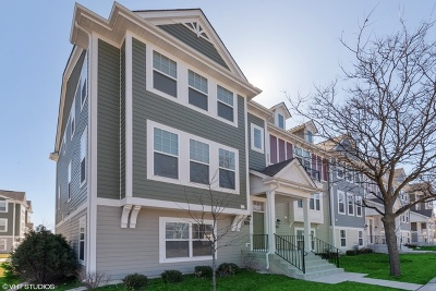 Schaumburg Condo/Townhouse For Sale: 130 Waterbury Circle