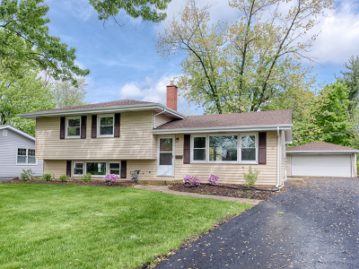 Naperville Single Family Home For Sale: 35 Robin Hill Drive