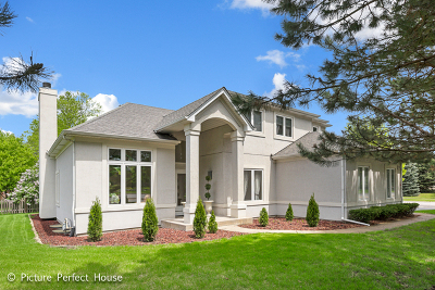 Naperville Single Family Home For Sale: 2203 West 87th Street