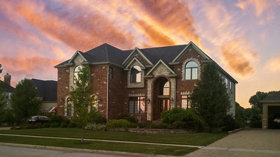 Naperville Single Family Home For Sale: 1935 Saddle Farm Lane