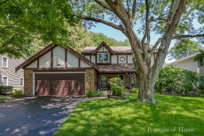 Naperville Single Family Home For Sale: 721 Zaininger Avenue