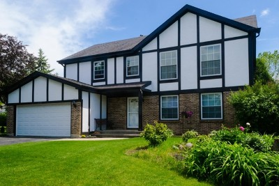 Grayslake Single Family Home For Sale: 17361 West Dartmoor Drive