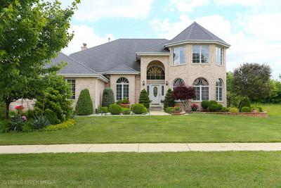 Palos Park Single Family Home For Sale: 10629 Ridgewood Drive