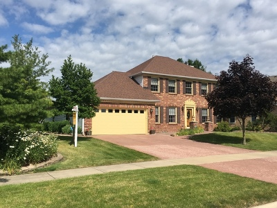 Naperville Single Family Home For Sale: 5215 Thatcher Drive