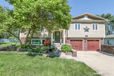 Plainfield Single Family Home For Sale: 13926 South Weller Drive