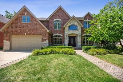 Arlington Heights Single Family Home For Sale: 1326 North Illinois Avenue