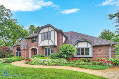 Orland Park Single Family Home For Sale: 8445 West 131st Street