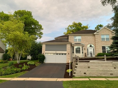 Wauconda Single Family Home For Sale: 724 Saddlewood Drive