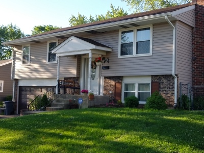 Glendale Heights Single Family Home For Sale: 259 East Wrightwood Avenue