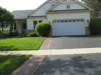 Huntley Single Family Home For Sale: 12873 Cold Springs Drive