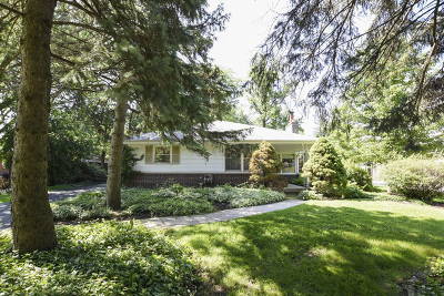 Clarendon Hills Single Family Home For Sale: 441 Naperville Road