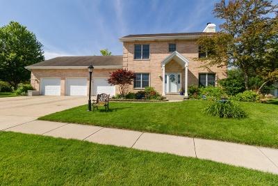 Bourbonnais Single Family Home For Sale: 915 Revere Street