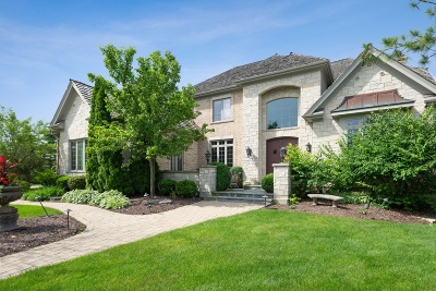 Burr Ridge Single Family Home For Sale: 8690 Crown Court