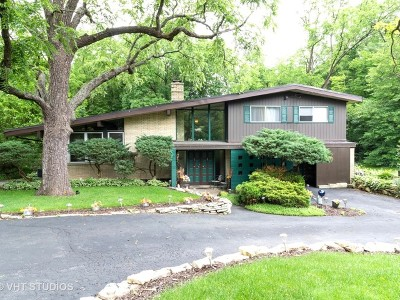 Homer Glen Single Family Home For Sale: 13949 South King Road