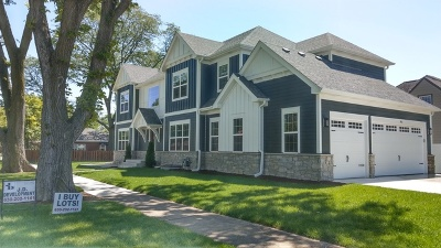 Elmhurst Single Family Home For Sale: 983 South Mitchell Avenue