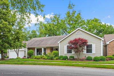 Naperville Condo/Townhouse For Sale: 376 River Bluff Circle