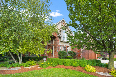 Naperville Single Family Home For Sale: 2412 Skylane Drive