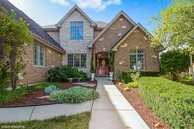 Orland Park Single Family Home Price Change: 14230 South 87th Place