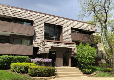 Carol Stream Condo/Townhouse For Sale: 564 Timber Ridge Drive #108