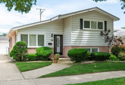 Skokie Single Family Home For Sale: 9501 Lavergne Avenue