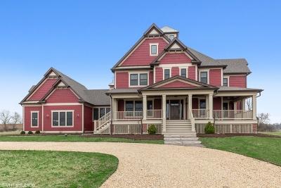 Hampshire Single Family Home For Sale: 45w702 North Serosun Farms Lane